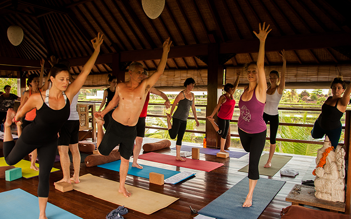 The livingroom the yoga travel company for Living room yoga coogee